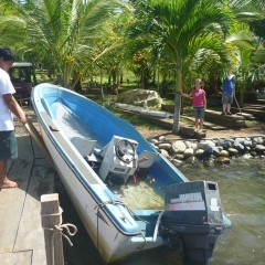 It sunk from a broken bilge pump and leak in the hull. The adventures here never cease. :)